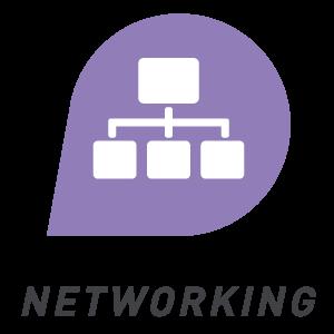 ESI Networking